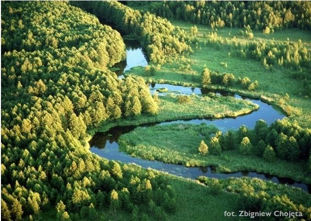 Zdjęcei lotnicze - rzeka Rospuda - Kliknięcie spowoduje wyświetlenie powiększenia zdjęcia