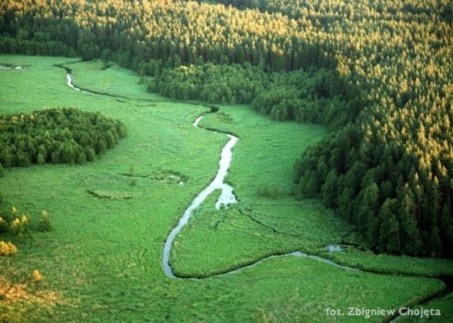 Zdjęcie lotnicze - widok na rzekę Rospuda - Kliknięcie spowoduje wyświetlenie powiększenia zdjęcia