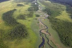 Herbowe rzeki