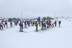 VII Międzynarodowy Bieg o Puchar Bieguna Zimna - relacja
