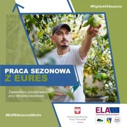 Kampania informacyjna nt. pracy sezonowej w UE